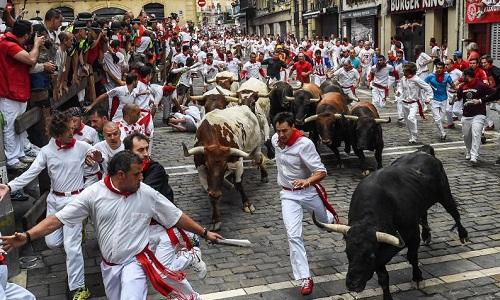 Бег быков в Памплоне